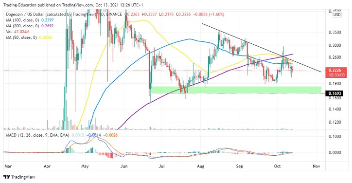 DOGE/USD Daily Chart 101321