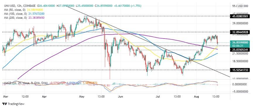 UNI/USD Daily Chart 081821