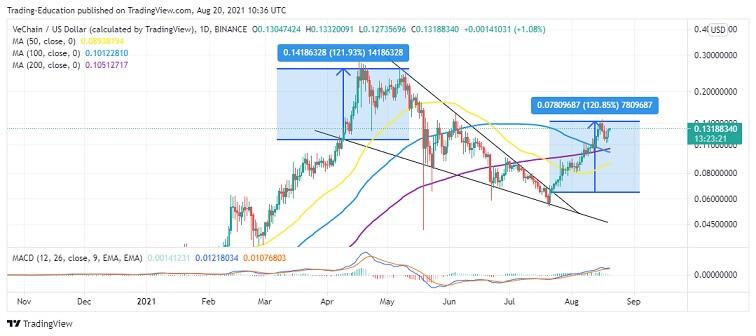 VET/USD Daily Chart 082021
