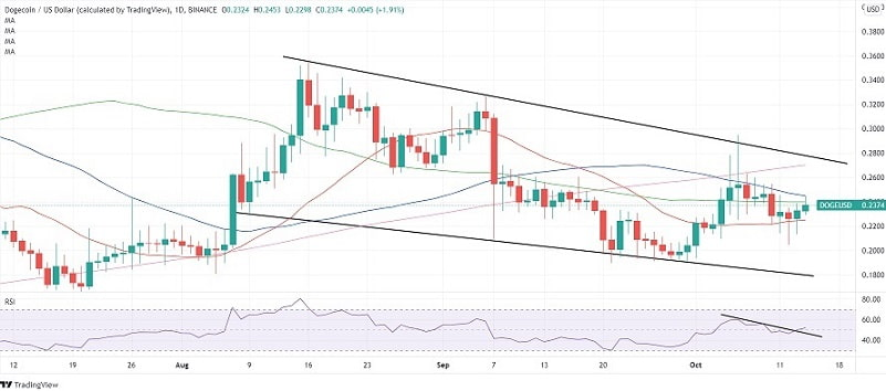 DOGE/USD daily chart 101421