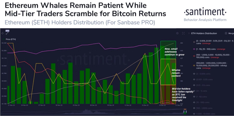 ethereum holders distribution chart 122220